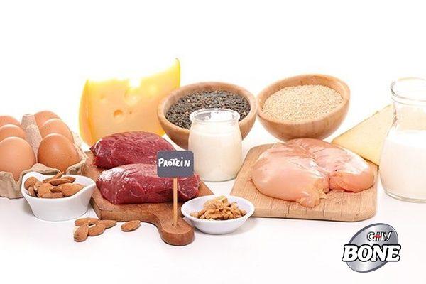 Protein có cả trong thực vật và động vật