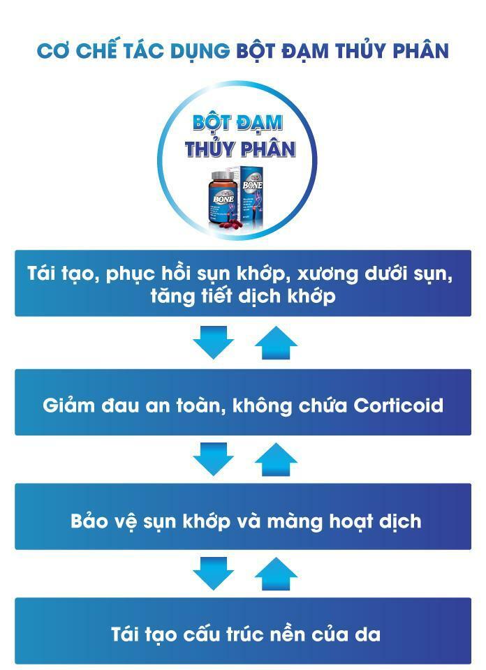 co-che-bot-dam-thuy-phan