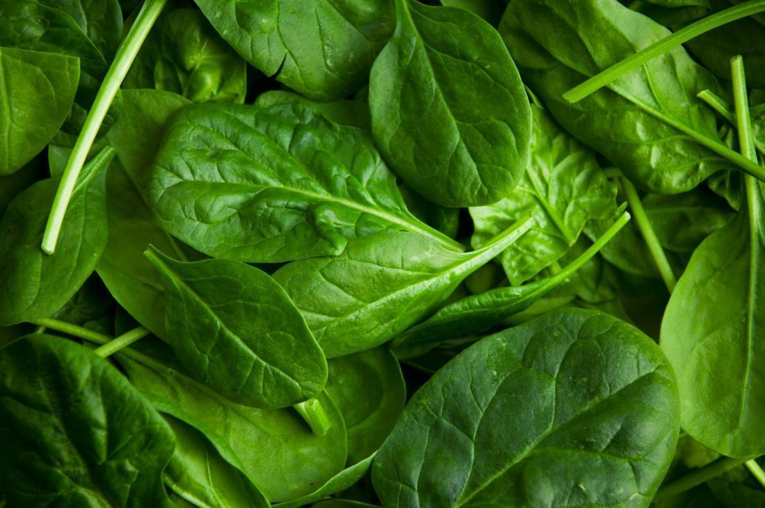 Rau lá xanh đậm chứa nhiều chất dinh dưỡng với vitamin B và Folate tốt cho người thoái hóa cột sống thắt lưng