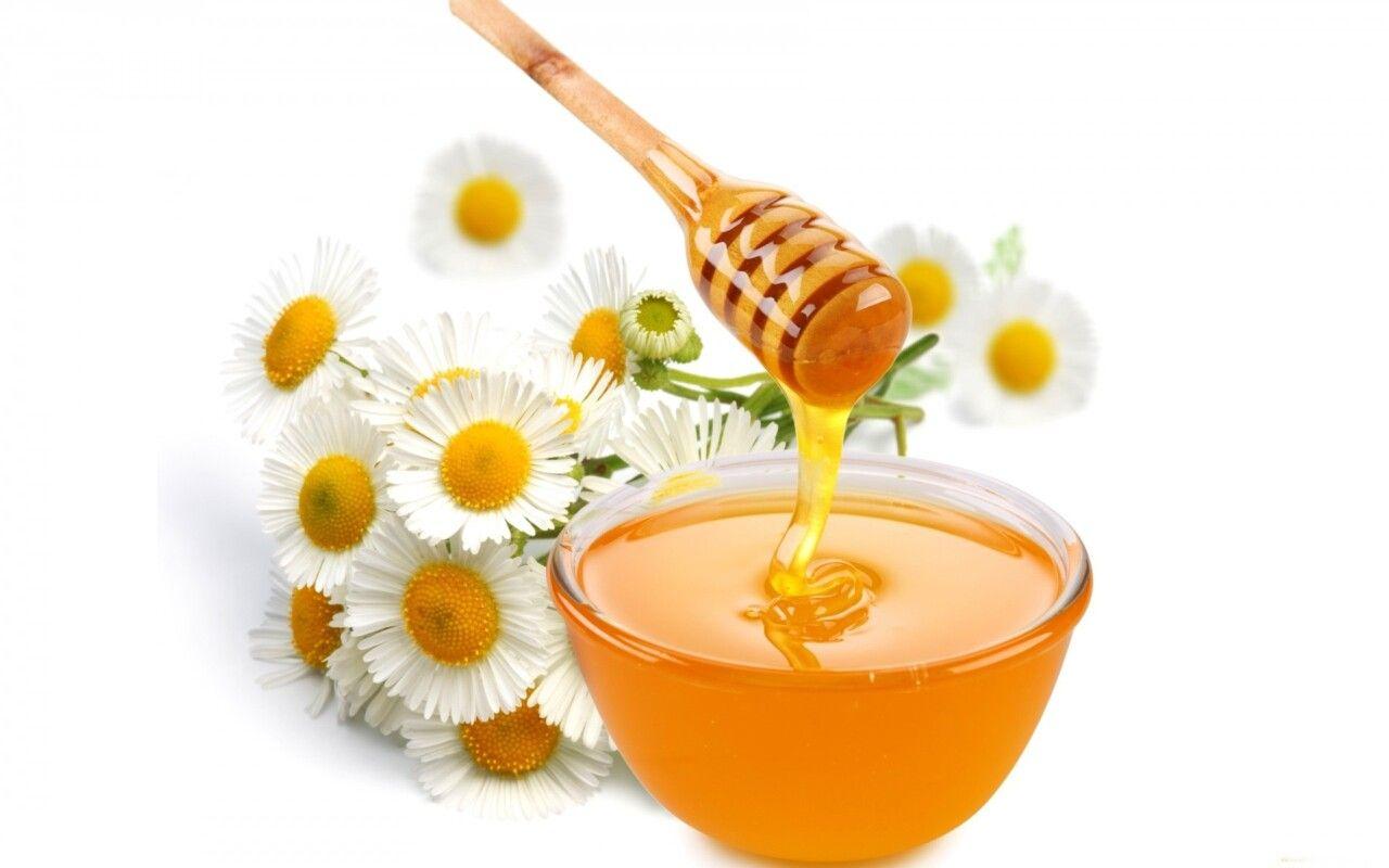 Chữa gai cột sống bằng ngải cứu và mật ong được nhiều người ưa chuộng
