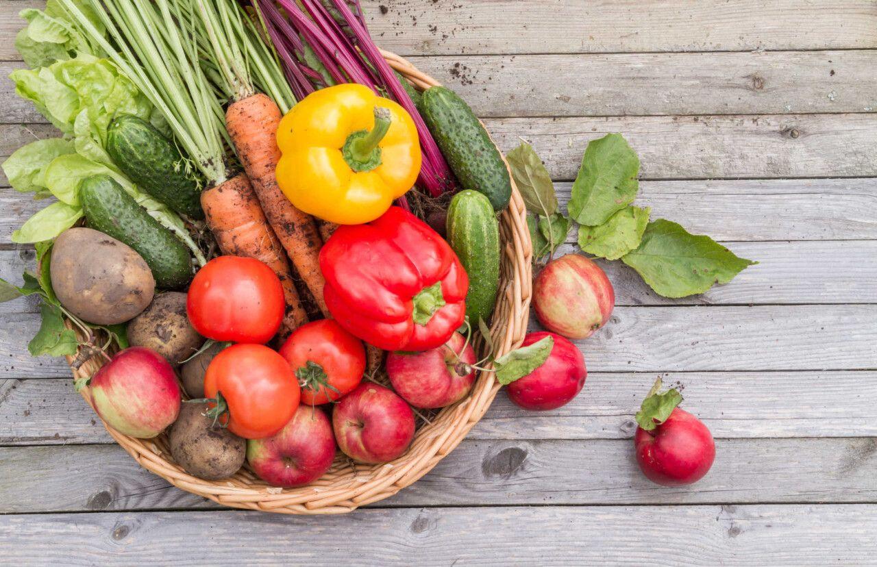 Chế độ ăn uống khoa học giúp hỗ trợ điều trị thoái hóa cột sống