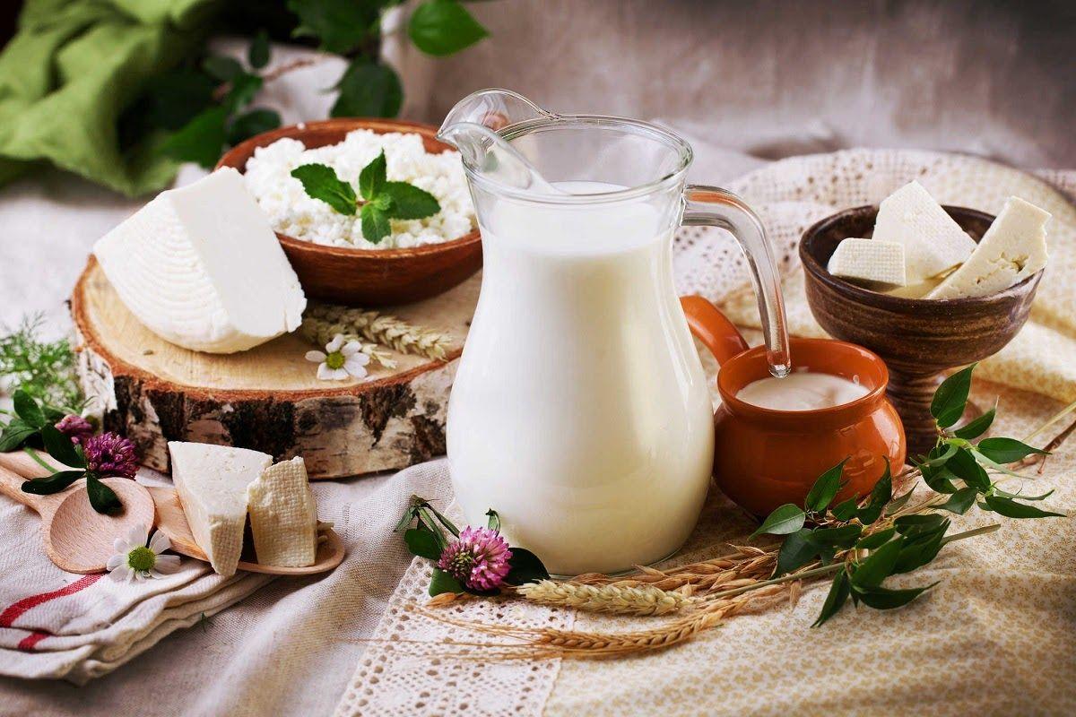 Trong sữa và các chế phẩm từ sữa như sữa chua, pho mát rất giàu canxi và vitamin D tốt cho xương khớp
