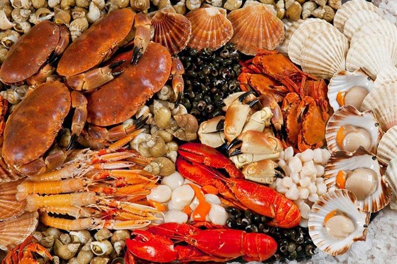 Hải sản là thực phẩm đại kỵ đối với bệnh nhân gút