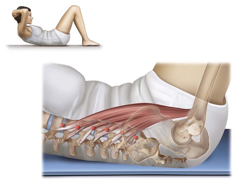 Mọi quá trình trình vận động của cơ thể đều gây tác động đến cột sống thắt lưng