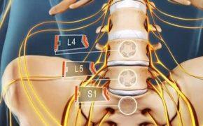 Gai đôi cột sống S1 là gì? Cách điều trị thế nào hiệu quả?
