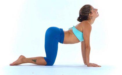 Thoát vị đĩa đệm có tập yoga được không?