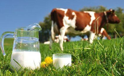 Tổng hợp 7 loại sữa tốt cho người bị thoái hóa cột sống